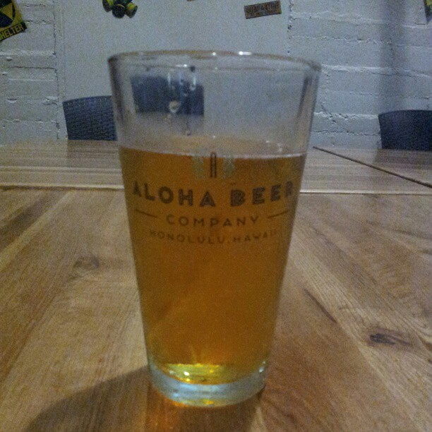 aloha beer hot blonde